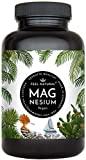 Magnesium Kapseln - 365 Stück (1 Jahr). 664mg je Kapsel, ...